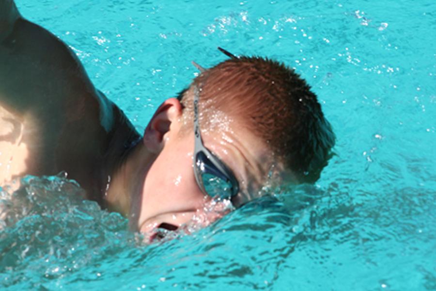ZwemmerNDDv4.png